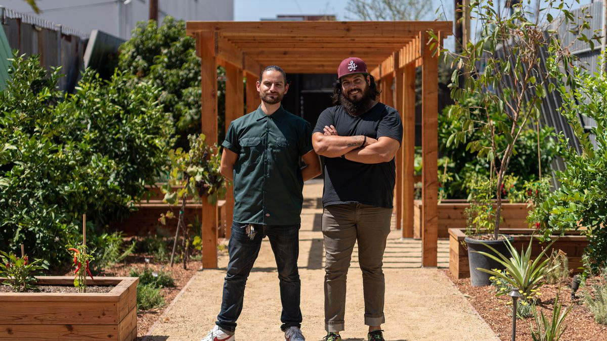 Two men stand in a sunny garden looking directly at camera.