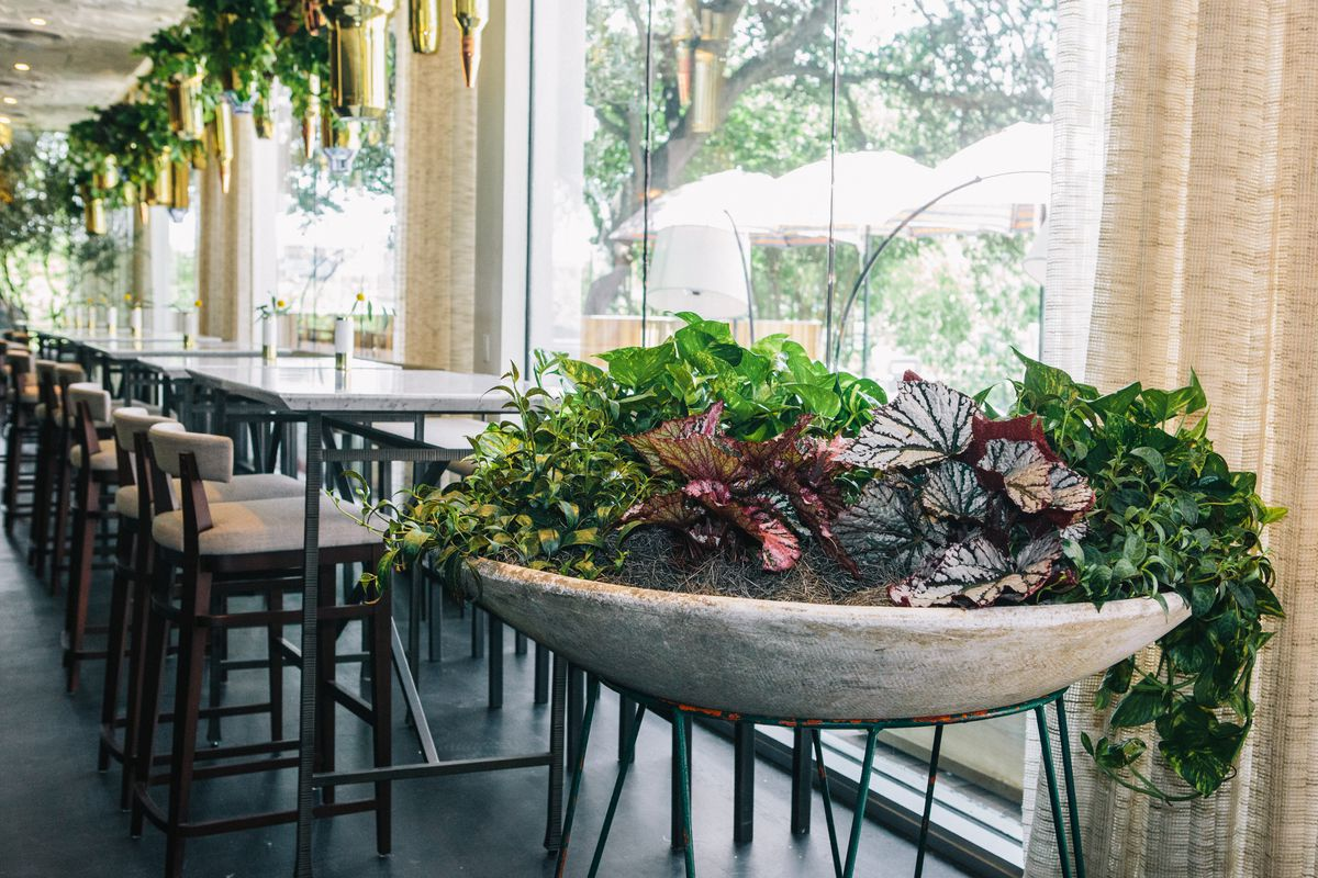 The giant planter at Arlo Grey