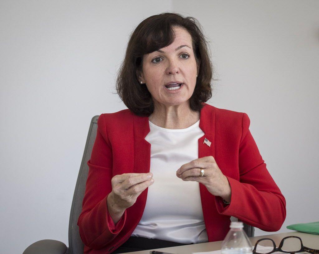 Joan McCarthy Lasonde, 9th State Senate district candidate.   Rich Hein/Sun-Times