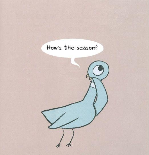 pigeon-5