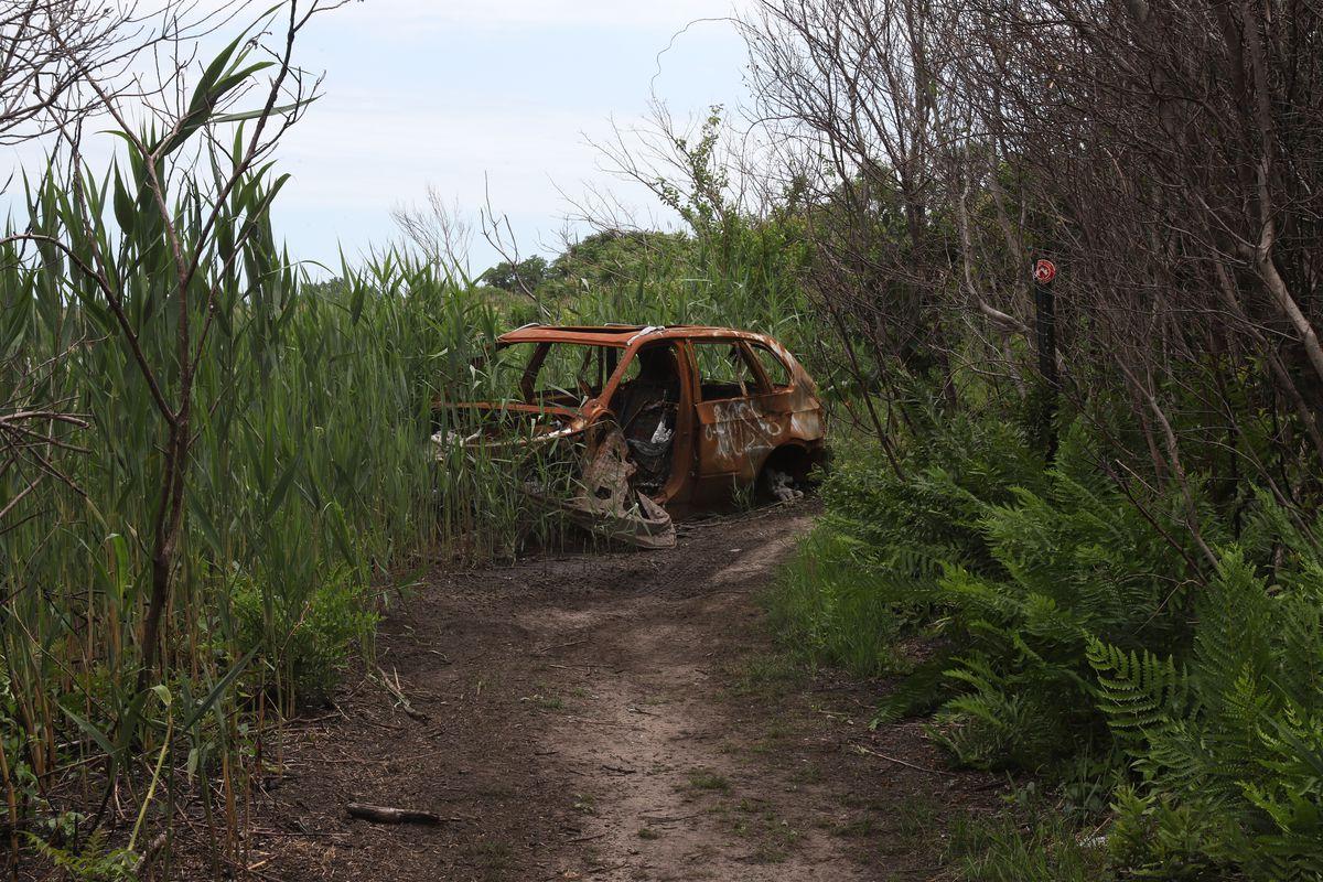 A Marine Park path leads toward the salt marsh in Jamaica Bay, June 13, 2021.