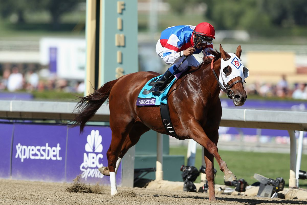 Groupie Doll dominated the Filly and Mare Sprint division in 2012.