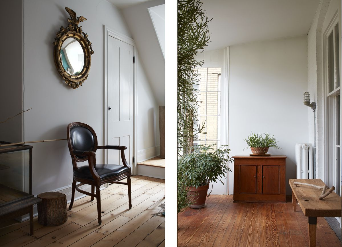 Photos from Carl Martinez's home: A photo of him among the plants in his sunroom, the sunroom filled with green plants, ornate antique furniture against a simple gray wall.