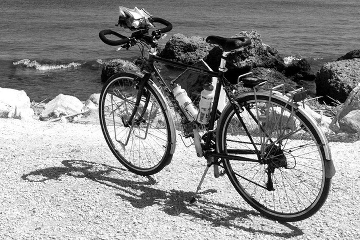 A bike called Reggie