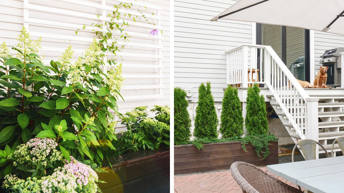 Summer 2021 Outdoor Rooms, Yellow Brick Home, clematis scrambles up the trellis, rebuilt staircase