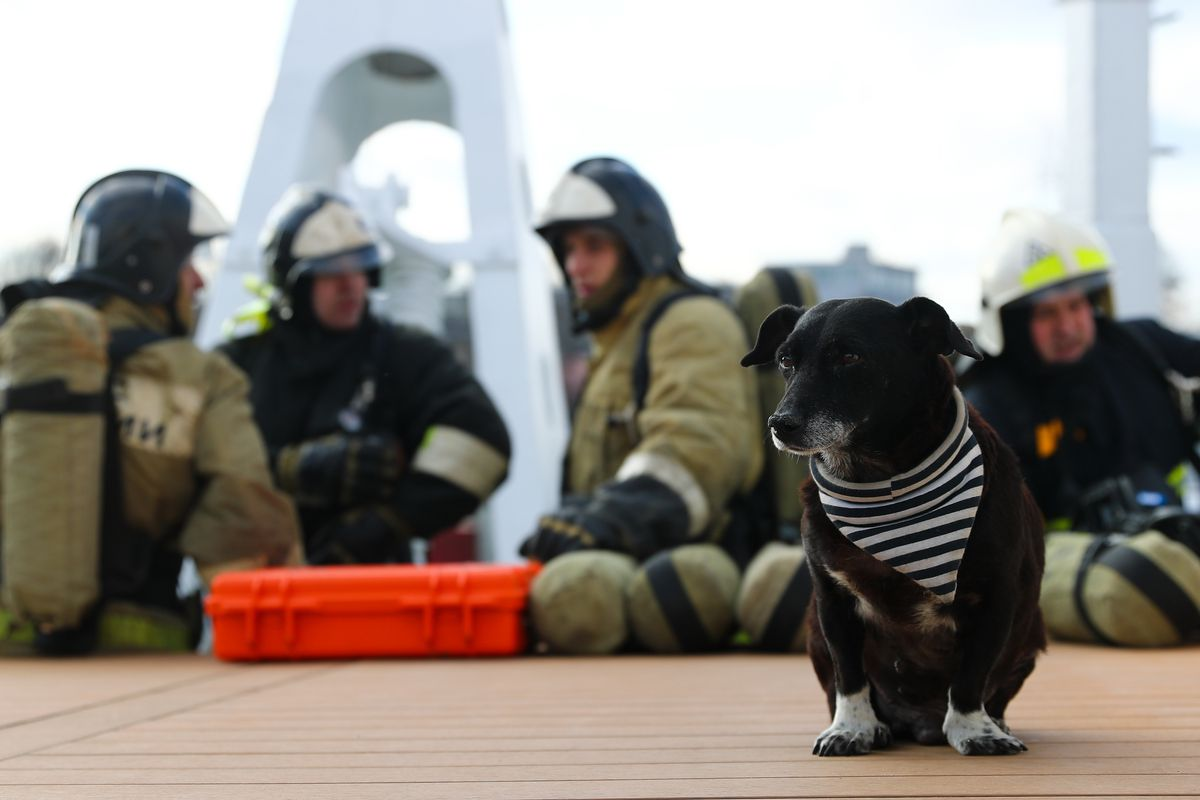 Fire simulation exercise aboard ship in Kaliningrad, Russia