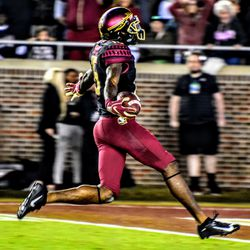 Artistic shot of how you all felt when RS FR Tamorrion Terry hauled in the game winning TD.