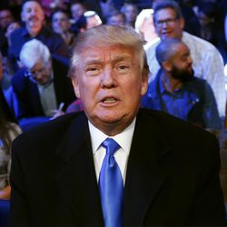 Republican presidential candidate Donald Trump watches as Tureano Johnson fights Eamonn O'Kane in an IBF middleweight bout at Madison Square Garden in New York on Saturday, Oct. 17, 2015.