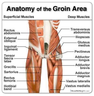Report Will Barton S Official Diagnosis Is Hip And Core