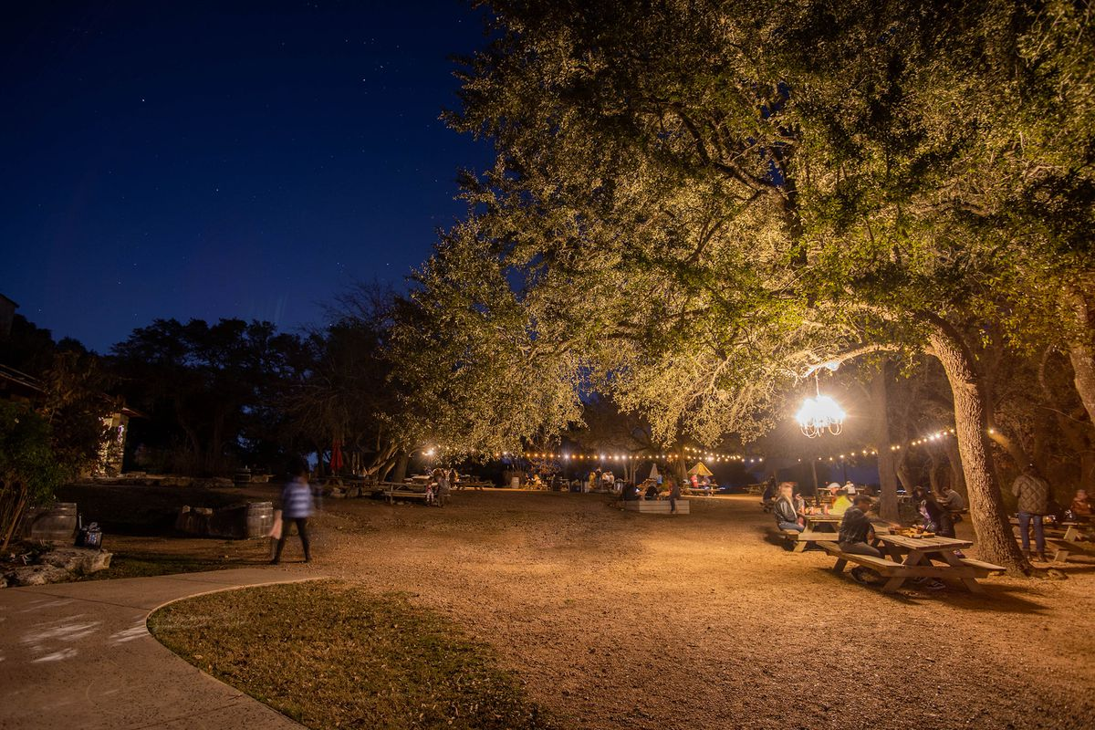 A big tree on the left with a hanging light and a bunch of picnic tables with people sitting at them and string lights through the trees, all at night