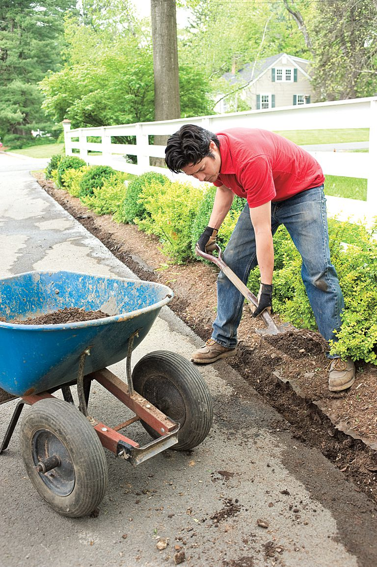 Man Digs Trench With Spade Alongside Driveway Edging