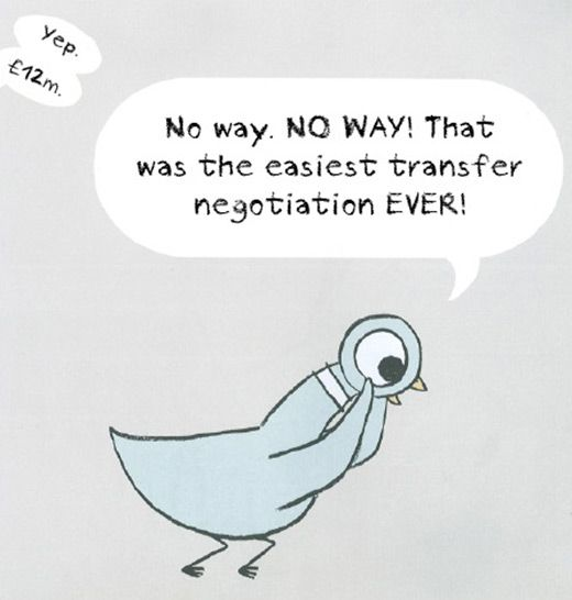 pigeon-17