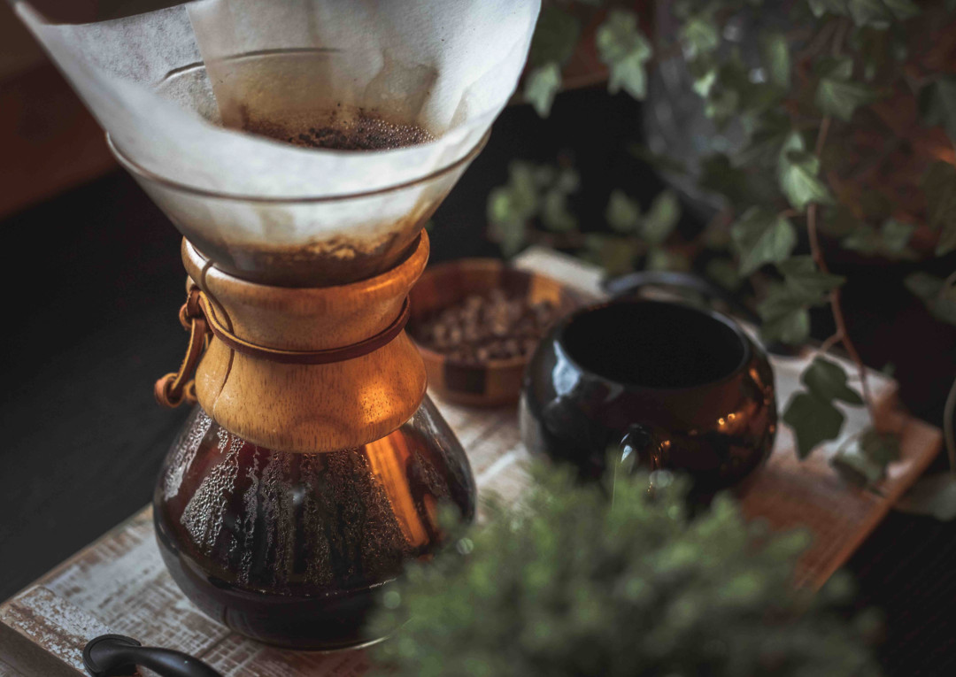 Sitting on a wooden board surrounded by a touch of shrubbery is coffee being brewed in a glass pot with a paper filter, a small brown pitcher to the right, and a small bowl of beans in the background.