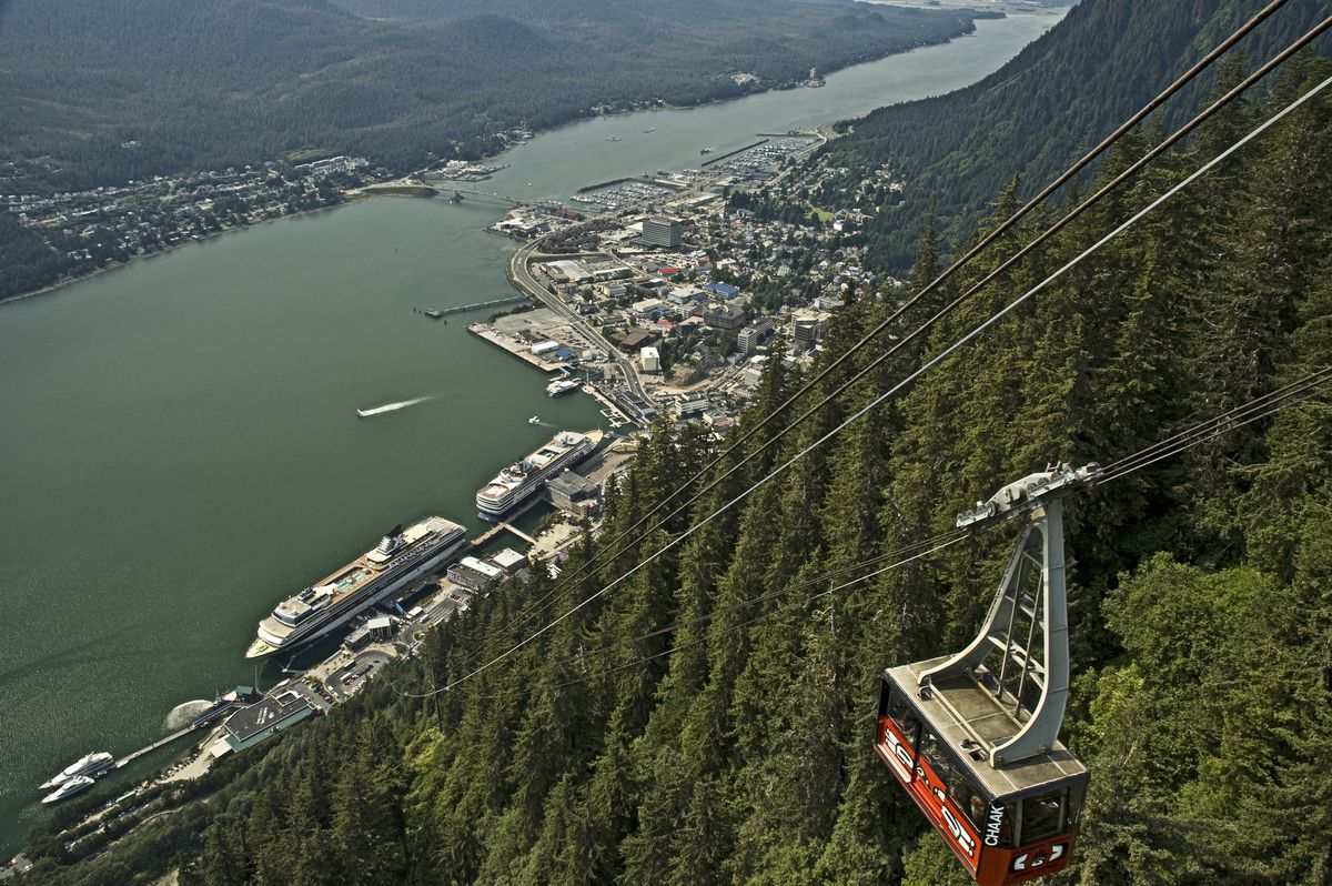 An aerial view of the Mt. Roberts Tramway. The tram is traveling on a cable above trees on the slope of a mountain. In the distance are boats and houses along a waterfront.