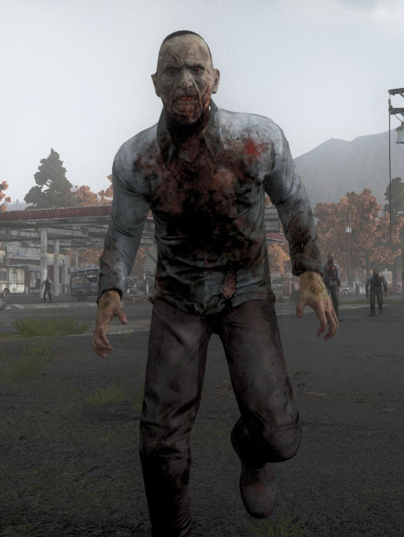 h1z1 review screen 5 tall