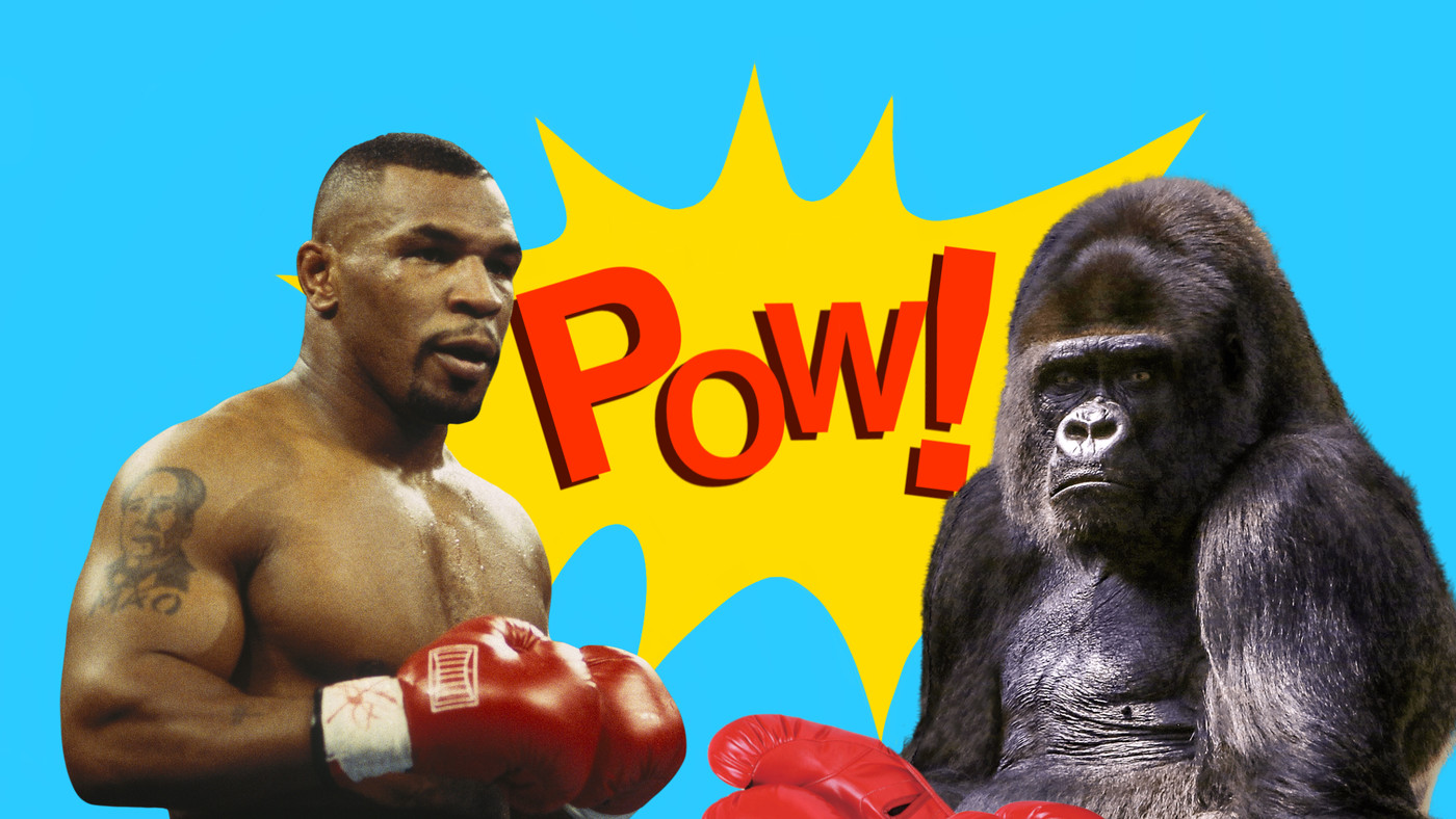 Mike Tyson Tried To Fight A Gorilla For $10,000 - Funny Or Die