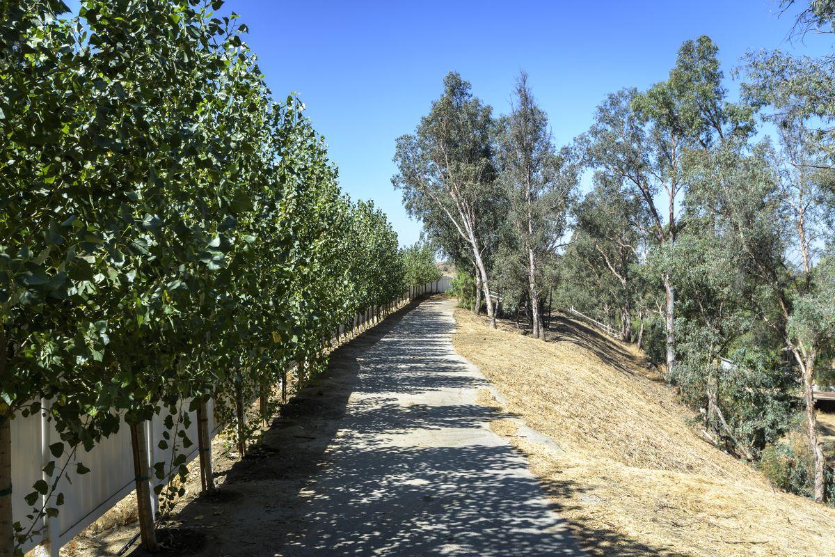 Scenic horse path