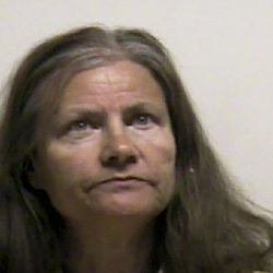 A mug shot of Diane Prigge, 62, when she was booked into the Utah County Jail on June 15, 2016.