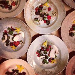 René's dish