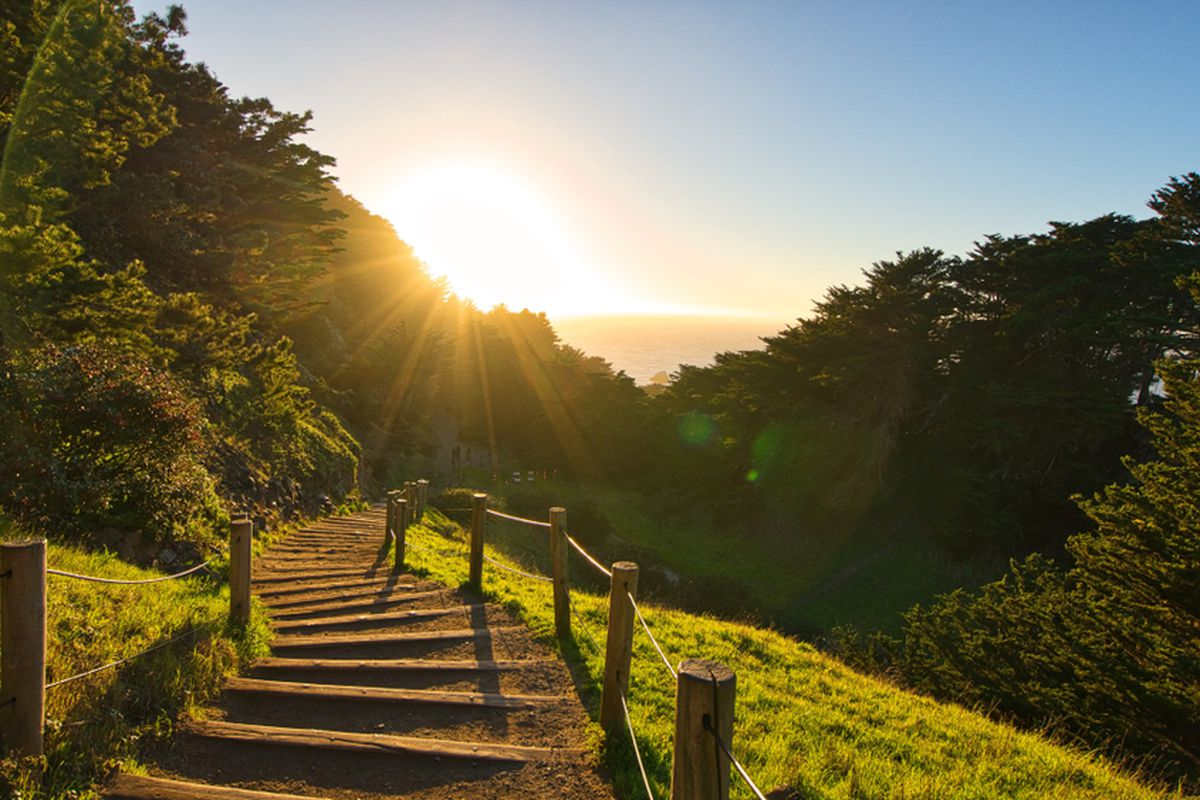 A sunset over trees and a grassy trail at Lands End.
