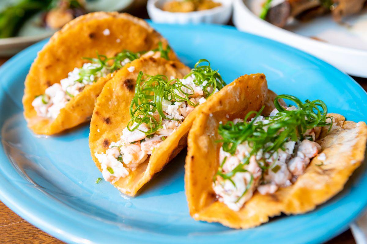 A plate of shrimp kelaguen served on three titiyas (coconut-scallion flatbreads)