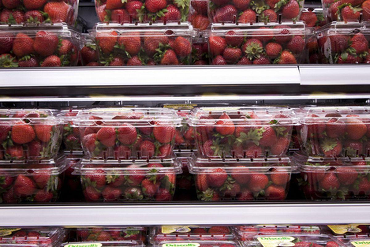 "East Harlem Target strawberries. <a href=""http://testofwill.blogspot.com/"">Femia</a>, 7/20/10"