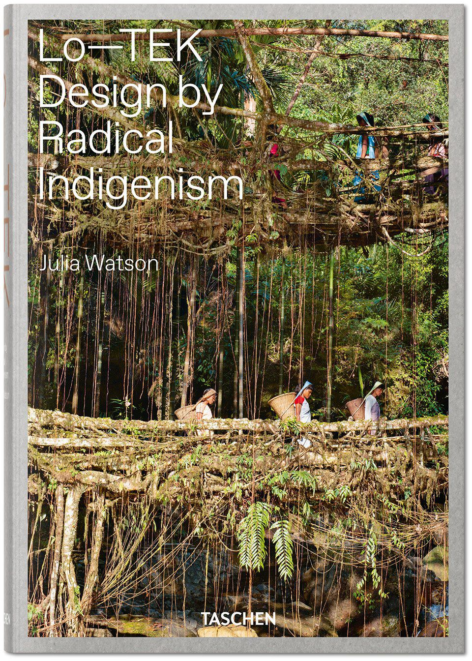 A book cover with an image of three people crossing a living root bridge in India.