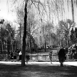 This photo of Liberty Park appeared in the old Deseret News Magazine in the late 1940s.