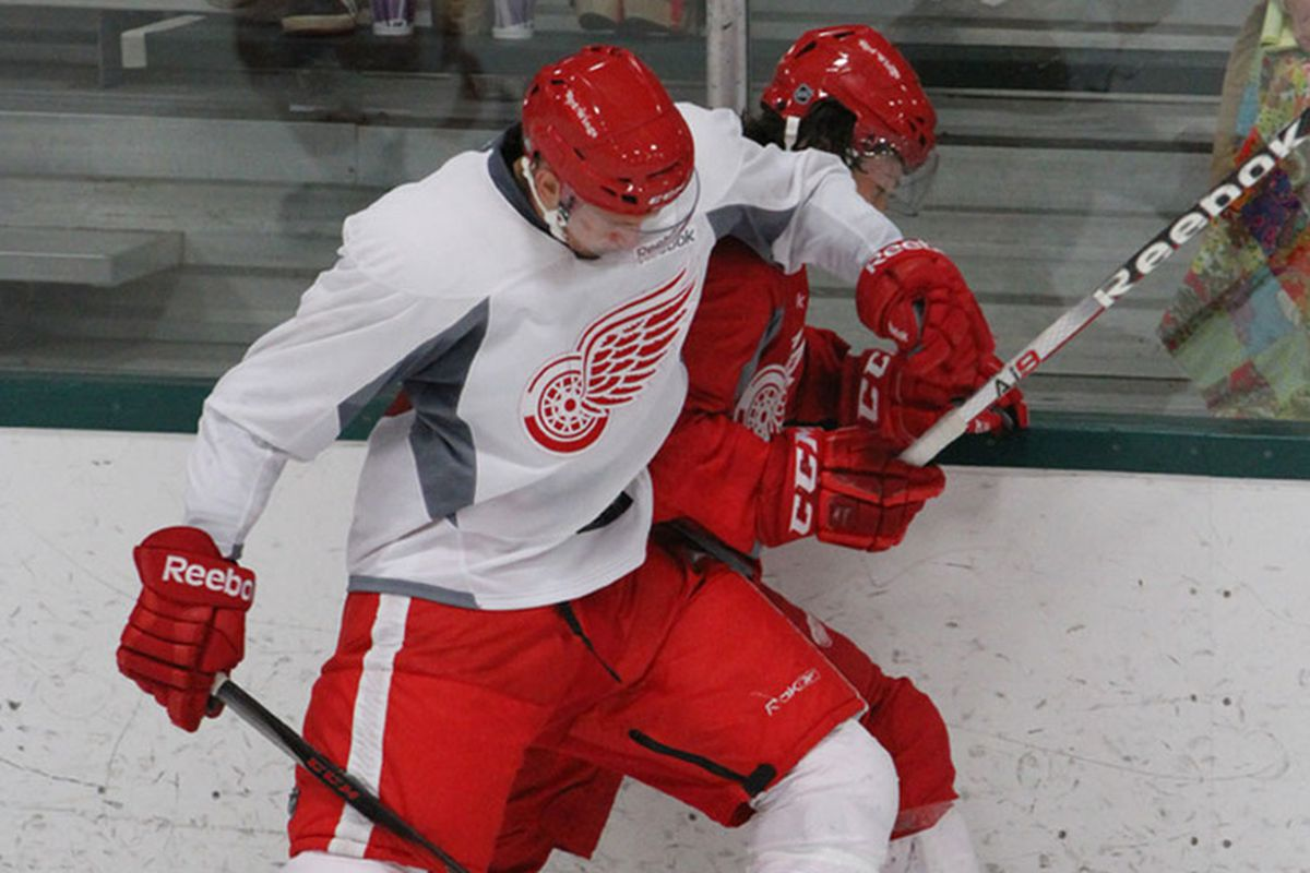 Anthony Mantha and Tyler Bertuzzi battle during the 2013 Development Camp Scrimmage.