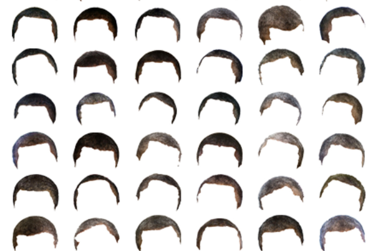 Some of the data used by the Proceedings of the Natural Institute of Science (PNIS) to calculate the graying of President Obama's hair.