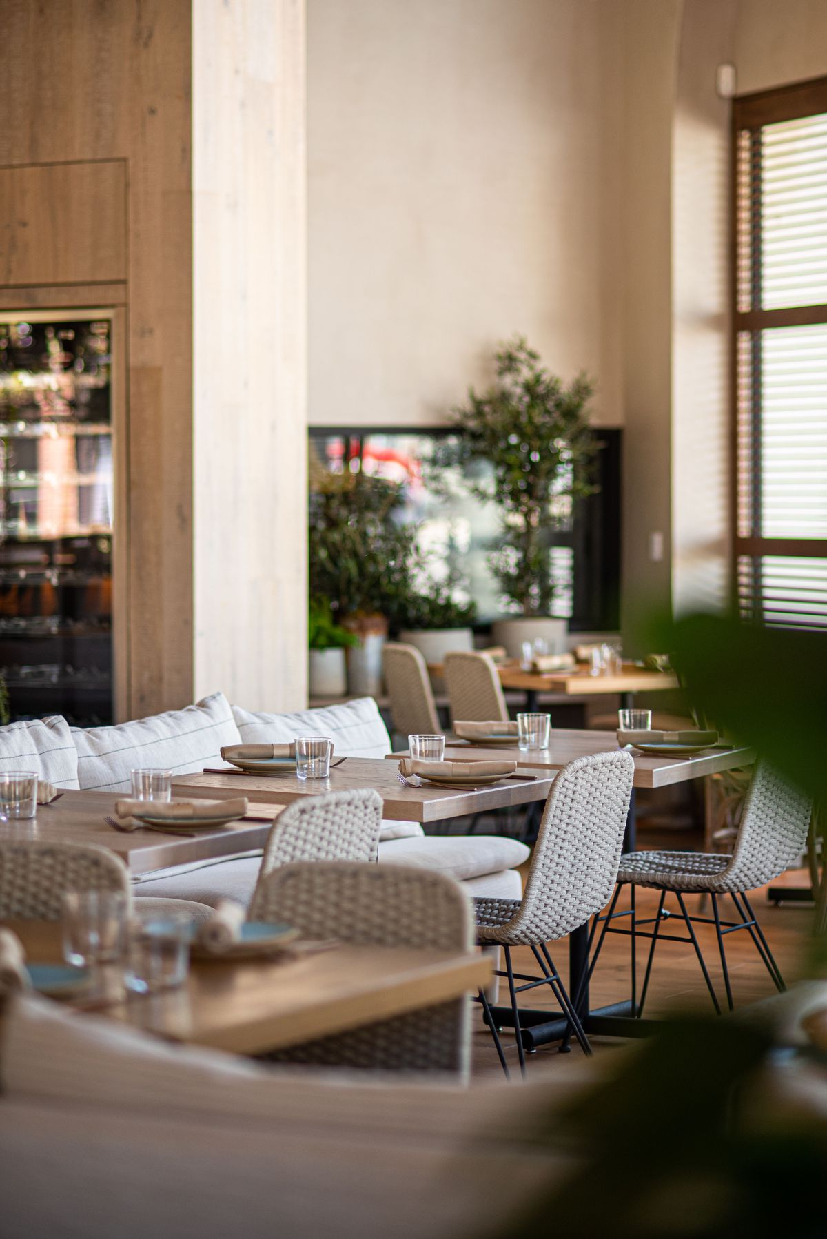 Off-white tables and chairs and leaves inside a new restaurant.