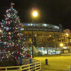 6:07 p.m. The tree with Wrigley in the background -
