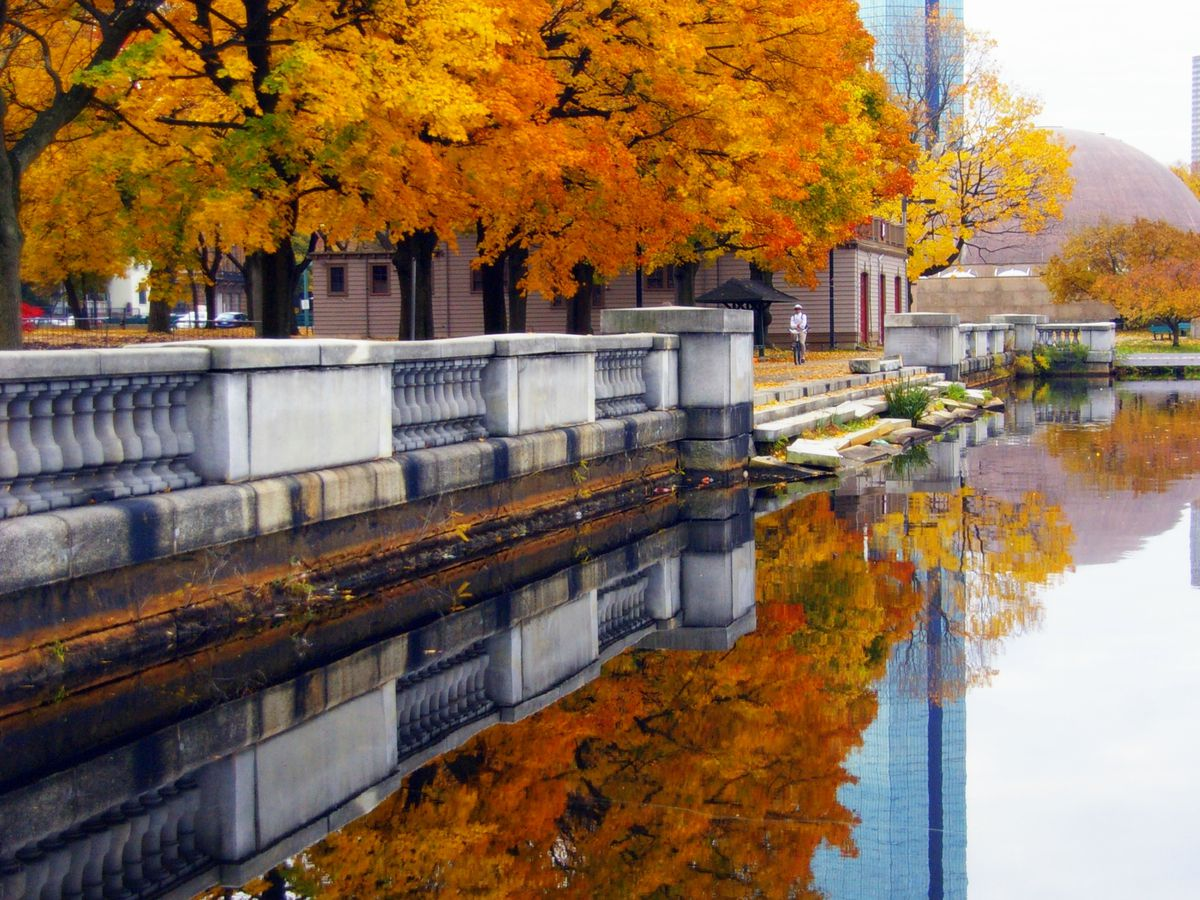 Trees changing color along the Charles River and next to a pedestrian walkway.