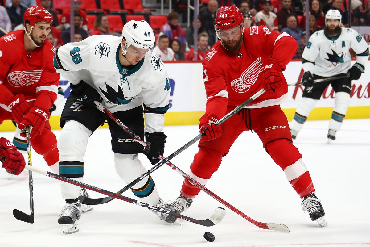 DETROIT, MI - JANUARY 31: Tomas Hertl #48 of the San Jose Sharks battles for the puck with Luke Glendening #41 of the Detroit Red Wings during the first period at Little Caesars Arena on January 31, 2018 in Detroit, Michigan.