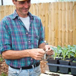Macon Fry the Garden Guy, the man responsible for (among other things) Hollygrove's arugula.