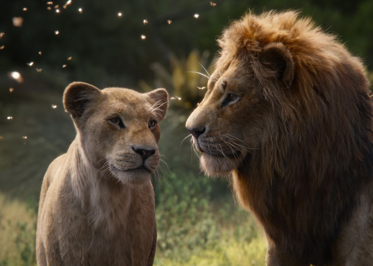 Beyoncé Knowles-Carter as Nala and Donald Glover as Simba in The Lion King (2019)