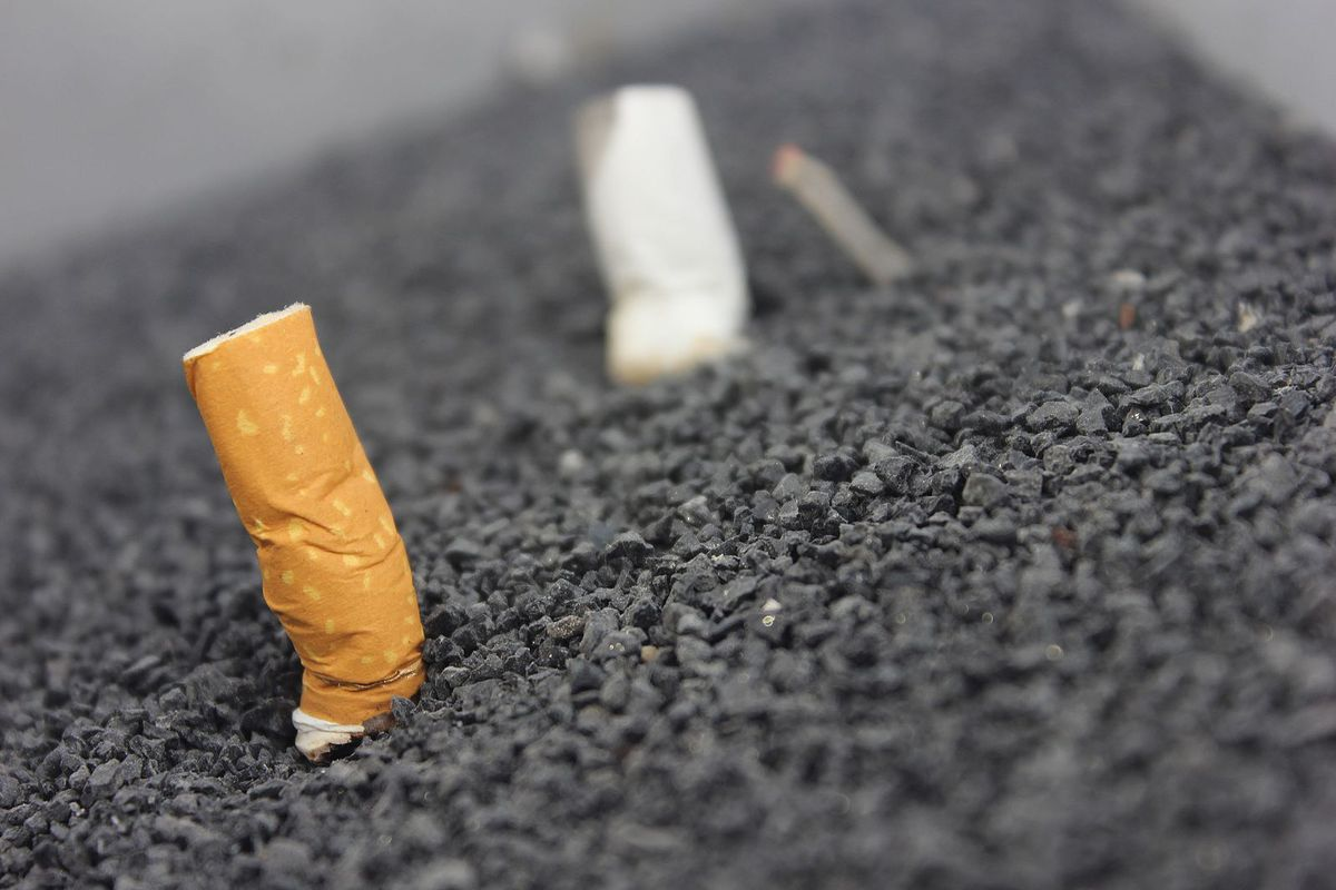 cigarette butts in road