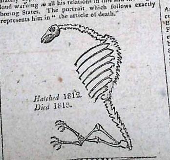 gerrymander skeleton