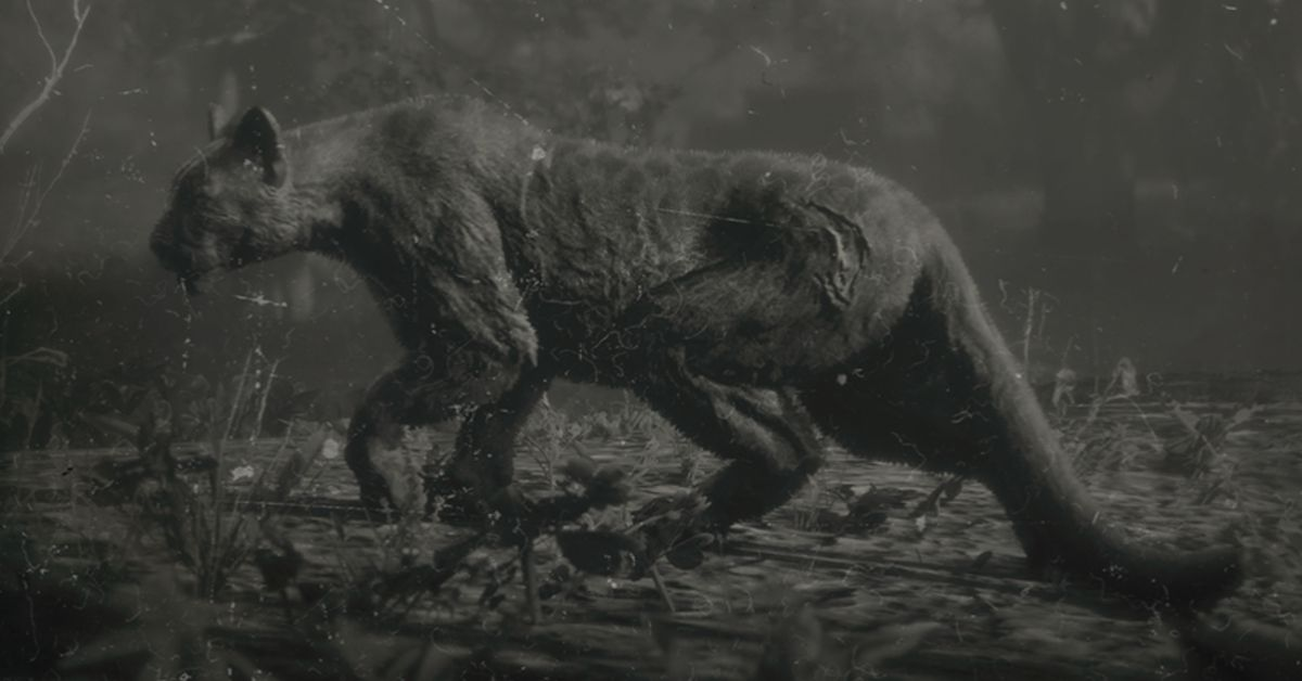Rdr2 Panther