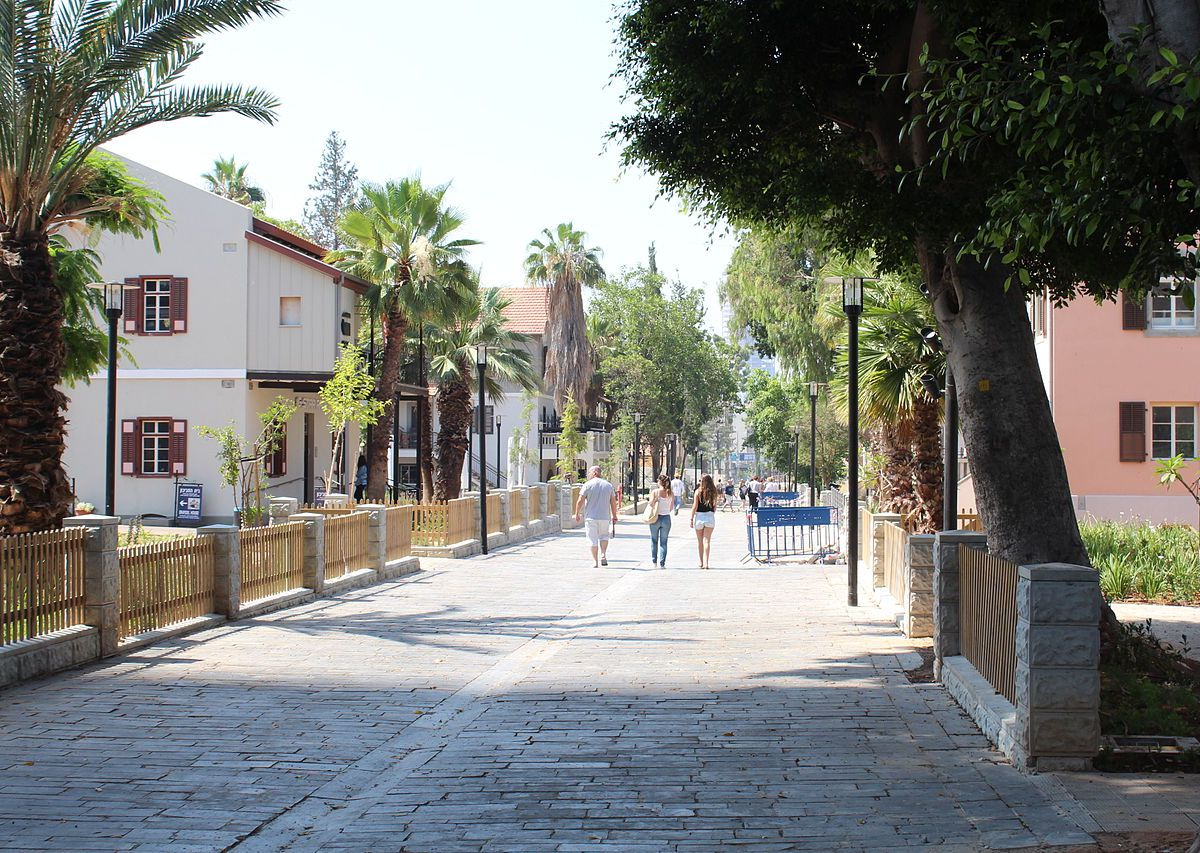 A street in Tel Aviv lined with palm trees and assorted houses.