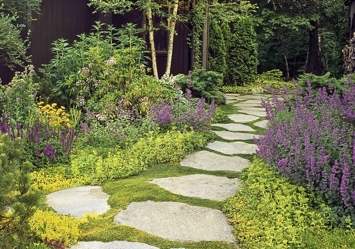 All About Groundcover This Old House
