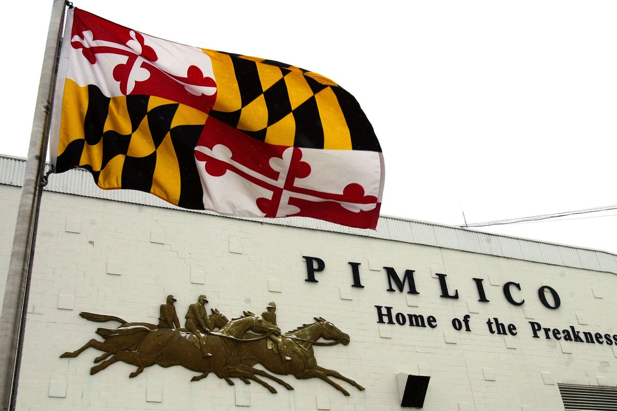 I couldn't find a picture of just the Baltimore flag, so you'll have to settle for the greatest state flag instead.
