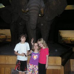 Homeschool co-op children Charlie Boyle, Olive Ward, and Petra Boyle at the Night at the Museum sleepover at the American Museum of Natural History in New York City.