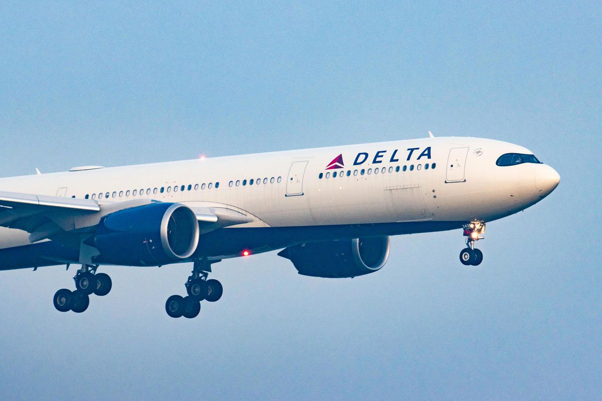 Delta Airlines wants competitors to share info about unruly passengers -  The Verge