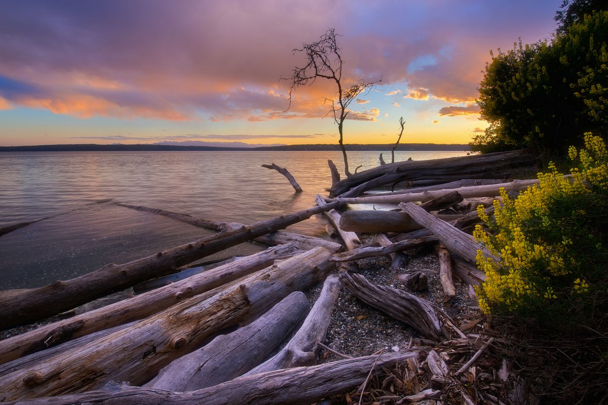 Washington State Parks upgrades reservation system - Curbed
