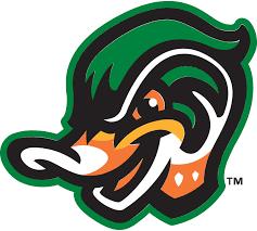 ducks - 10 minor league baseball mascots we really want to eat