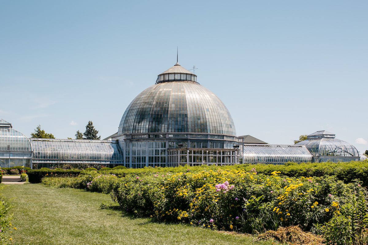 The exterior of the Anna Scripps Whitcomb conservatory building. The building has a dome top. There are trees and grass in front of the building.