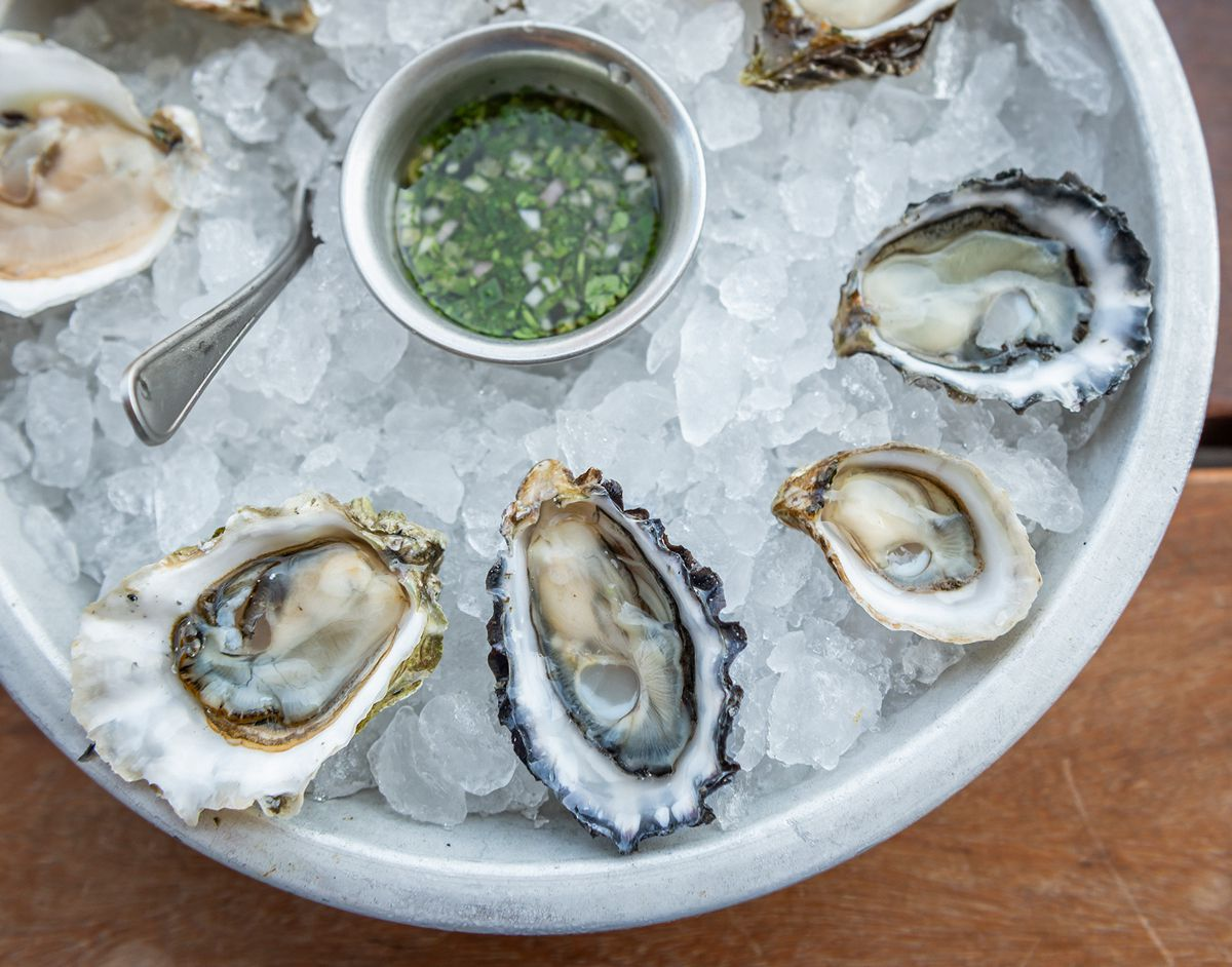 Oysters on the half shell on a bed of ice at Hog Island