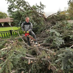 Mark Foster cuts limbs off of a pine tree that was felled by high winds in Farmington on Tuesday, Sept. 8, 2020.