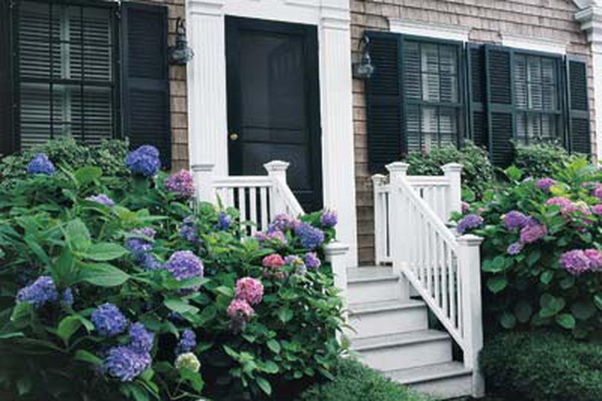 House With Hydrangeas